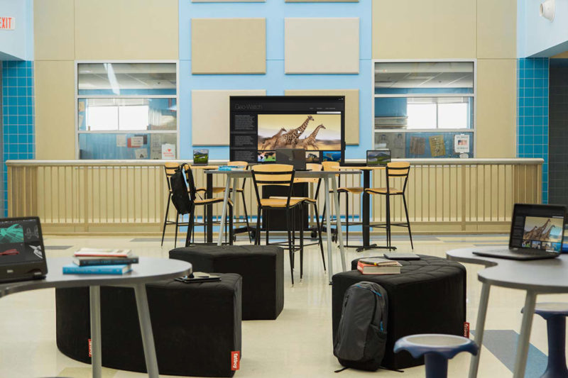 Common Learning Area